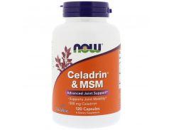 Целадрин и МСМ (Celadrin & MSM) 120 капсул