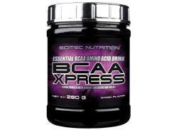 BCAA Xpress комплекс аминокислот со вкусом манго 280 г