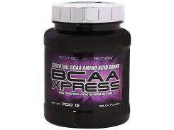 BCAA Xpress комплекс аминокислот со вкусом дыни 700 г