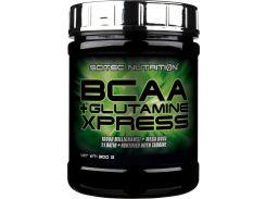 BCAA+Glutamine Xpress 1:1 комплекс аминокислот со вкусом мохито 300 г