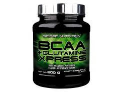 BCAA+Glutamine Xpress 1:1 комплекс аминокислот со вкусом жвачки 600 г