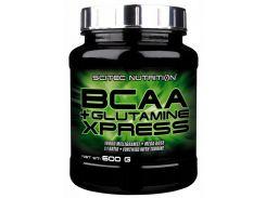 BCAA+Glutamine Xpress 1:1 комплекс аминокислот со вкусом мохито 600 г