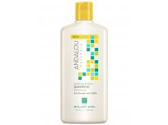 Шампунь с подсолнухом и цитрусовыми  (Shampoo Sunflower and Citrus) 340 мл