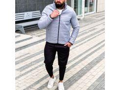 Мужская демисезонная куртка Асос FD1708 рL светло-серая