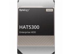 Synology HAT5300 12 TB (HAT5300-12T)