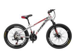 Велосипед Titan Maxus 24 (24TWS18-30-4)