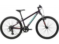 Велосипед Orbea MX 24 XC 2020 Purple-Pink (K01224JT)