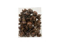 """Набор для декорирования """"Сушеные цветы"""" Coincasa 9х7х2см Темно-коричневый (DI66971873386)"""