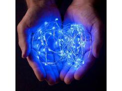 Светодиодная гирлянда Lighteer Technology Limited 10м 100led Blue (000000170)