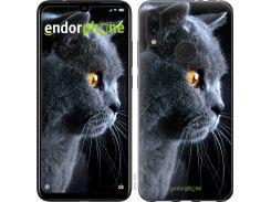 Силиконовый чехол Endorphone на Xiaomi Redmi Note 7 Красивый кот (3038u-1639-26985)