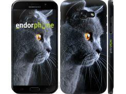 Панель Endorphone на Samsung Galaxy A5 (2017) Красивый кот (3038u-444-26985)