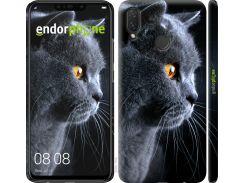 Пластиковый чехол Endorphone на Huawei P Smart Plus Красивый кот (3038m-1555-26985)