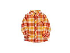Рубашка Grain de ble 68см Оранжевый 930646155 (DI66930646155)