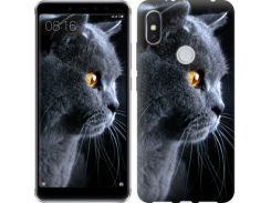 Чехол EndorPhone на Lenovo S5 Pro Красивый кот (3038m-1615)