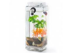 Мини аквариум самоочищающийся My Fun Fish (ip3324)
