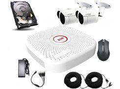 Уличный комплект AHD видеонаблюдения Longse 2M2N c 2 камерами 2 Мп + HDD 500Гб