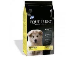 Сухой корм Equilibrio Dog суперпремиум, для щенков средних пород, 15 кг