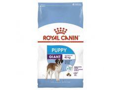 Сухой корм Royal Canin Giant Puppy для щенков гигантских пород до 8 месяцев, 15 кг