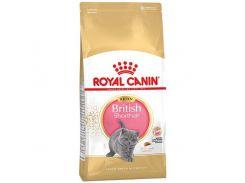 Сухой корм Royal Canin British Shorthair Kitten для британских короткошерстных котят до 12 месяцев, 10 кг