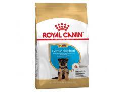 Сухой корм Royal Canin German Shepherd Puppy для щенков немецкой овчарки до 15 месяцев, 12 кг