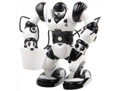 Poбoт нa p/у Roboactor (TT313)