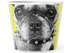 Цветочное кашпо Dog, MyFacepotUA