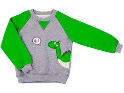 Реглан для мальчика Дракоша, Danaya, серый с зеленым (92 р.)