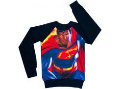 Свитшот для мальчиков Superman, Colibric (34)