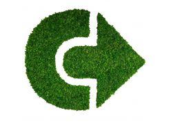 Стабилизированный мох SO Green Логотип 1м² (005)