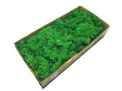 Стабилизированный мох SO Green темно-зеленый 0,5 кг (078)