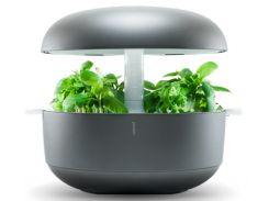 Умный домашний сад Plantui 6 Smart Garden серый (SG6-G)