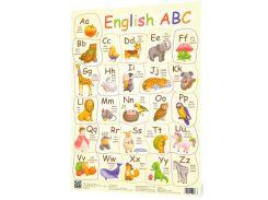Плакат Английский алфавит New Зірка (346812)