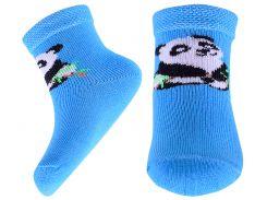 Носки детские АфРика с пандой голубые размер 12 (М11В310КБ)