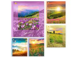 Набор тетрадей школьных 10 шт Тетрада 60 листов клетка А5 Impresion 5 дизайнов (01681)