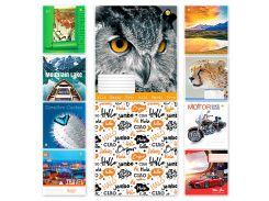 Набор тетрадей школьных 10 шт Тетрада 60 листов клетка А5 Микс 4 10 дизайнов (01687)