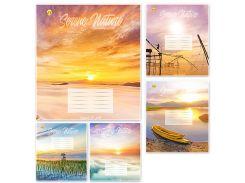 Набор тетрадей школьных 10 шт Тетрада 60 листов клетка А5 Природа 5 дизайнов (01683)