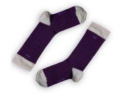 Мужские однотонные носки ТМ Alex M (Алекс М) Dots фиолетовые 40-45 р (3002-5)