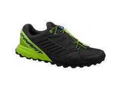 Чоловічі кросівки Dynafit Alpine Pro 40,5 Black